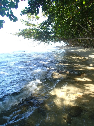 My favourite swimming hole in Puerto Viejo near the village, under the trees