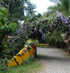 A funky treehouse retreat along the high way to Manzanillo