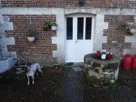 The kitchen door with original well