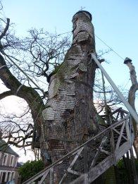 AB Tree2